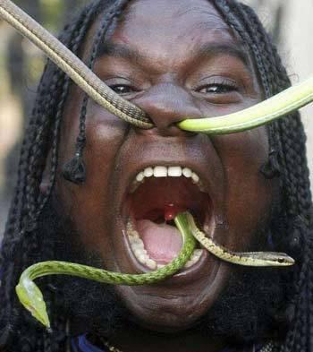 【画像】モテる顔は 爬虫類顔>猿顔>犬顔>ゴブリン顔>ゴリラ顔