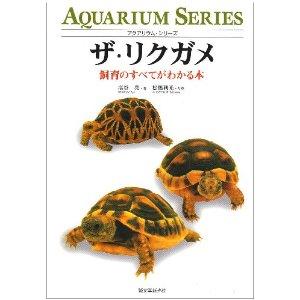 【画像・飼育】カメ・リクガメの全てがわかるスレ(*´・ω・)