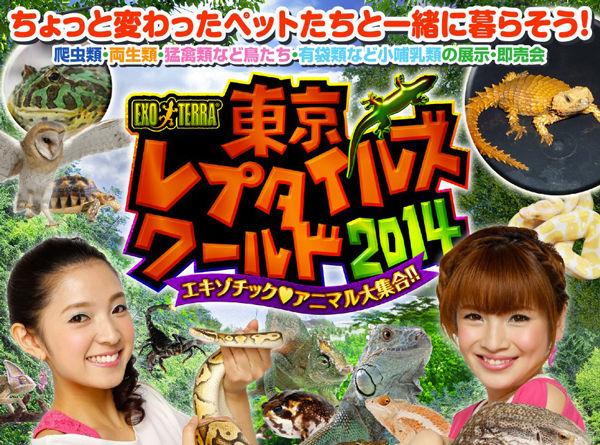 【レポート】日本最大級の爬虫類イベントに行ってきた!【東京レプタイルズワールド2014冬】