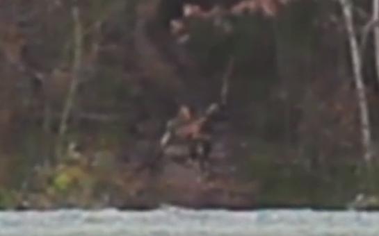【動画】オレゴン州で撮影されたクリーチャーが本物・・・