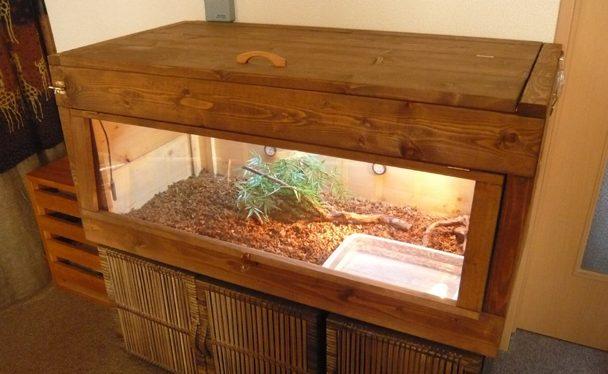 リクガメの飼育方法と飼育器具 part2