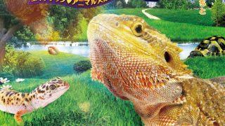 爬虫類イベント「東京レプタイルズワールド2017冬」に行ってきました