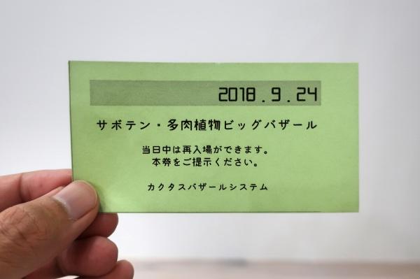 サボテン・多肉植物ビッグバザールチケット