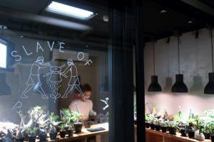 豪徳寺の植物ショップ「SLAVE OF PLANTS」訪問レポート